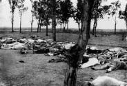 """Na legenda, lê-se: """"Aqueles que caíram ao largo. Cenas como essa eram comuns nas províncias armênias na primavera e no verão de 1915. A morte provocada por várias formas - massacre, fome, exaustão - vitimou grande parte dos refugiados. A polícia turca justificou isso como resultado da deportação."""""""